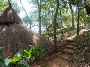 Mushroom Farm - Malawi