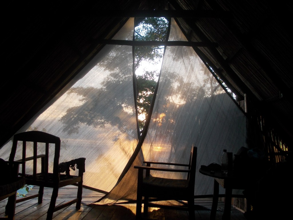 Sunrise in mushroon farm tent - Malawi